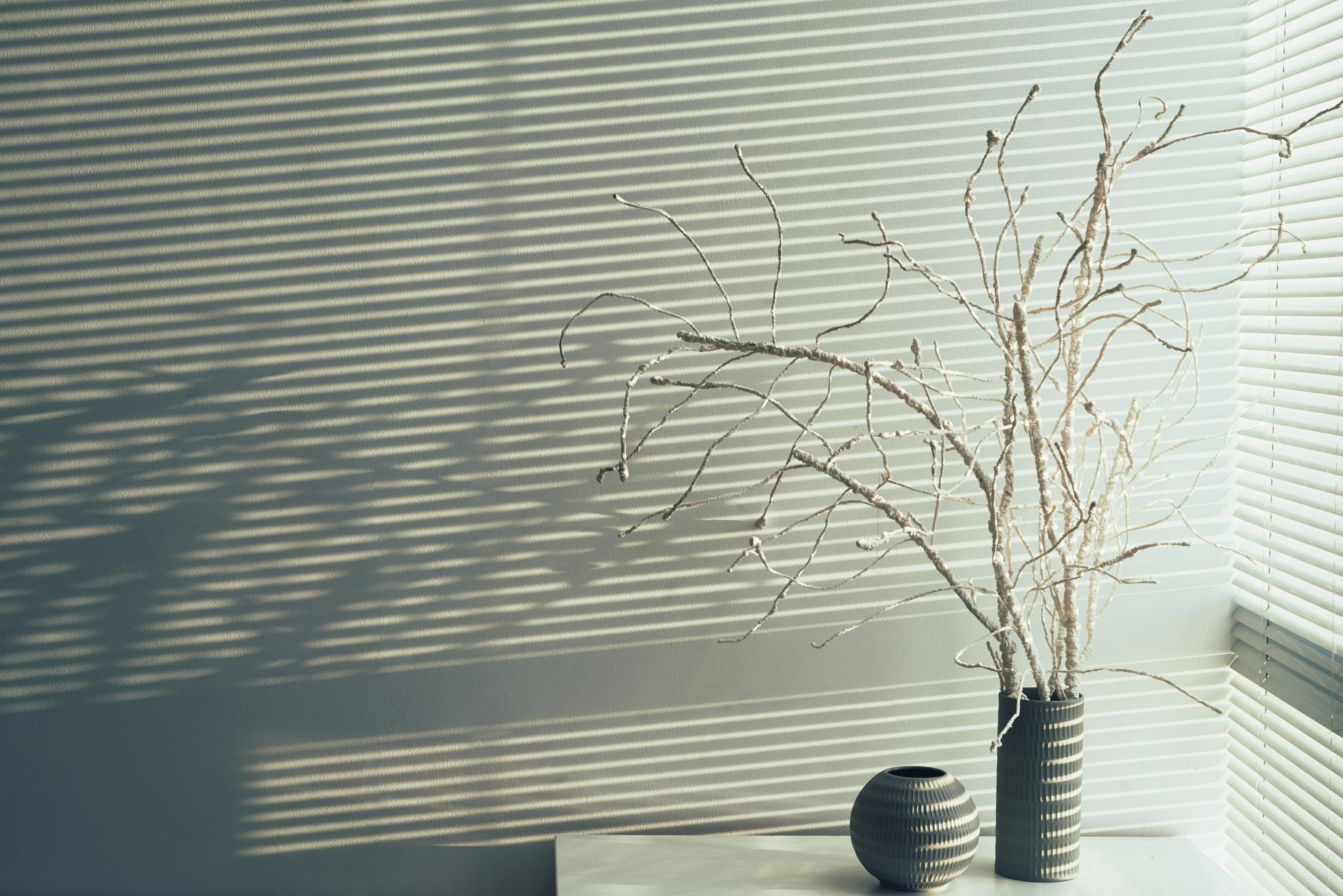 Vase with white tree branches at the wall